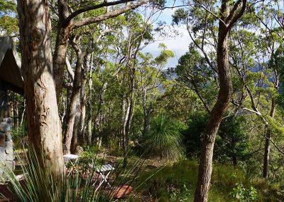 Ridge-Cottage-Binna-Burra-Lamington-National-Park